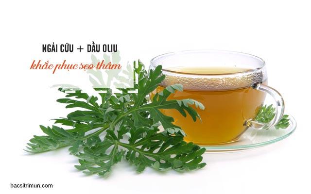 trị sẹo bằng ngải cứu và dầu oliu