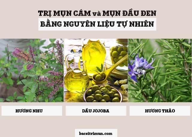 cách trị mụn cám và mụn đầu đen bằng hương nhu, hương thảo và dầu jojoba