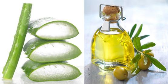 dầu oliu và nha đam trị mụn