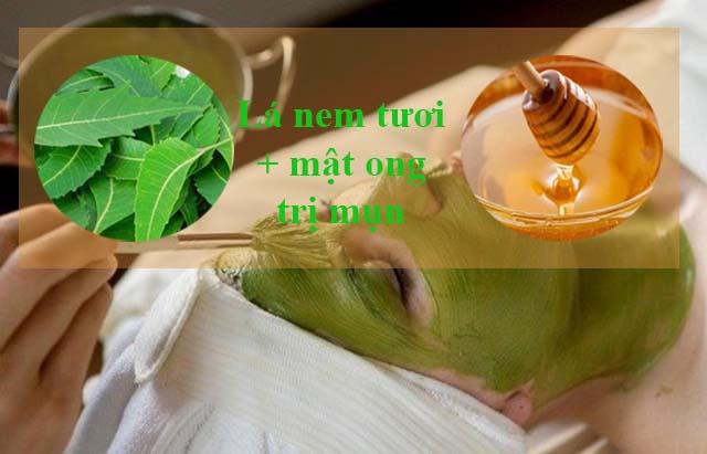 Cách trị mụn bằng lá neem và mật ong trị mụn