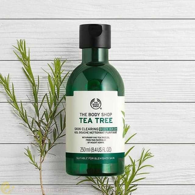 Sữa tắm trị mụn The Body Shop Tea Tree Body Wash