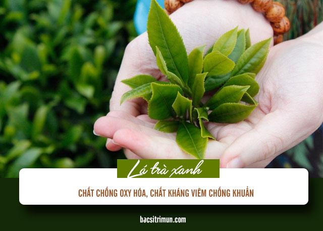 cách trị mụn cám bằng phương pháp tự nhiên với lá trà xanh