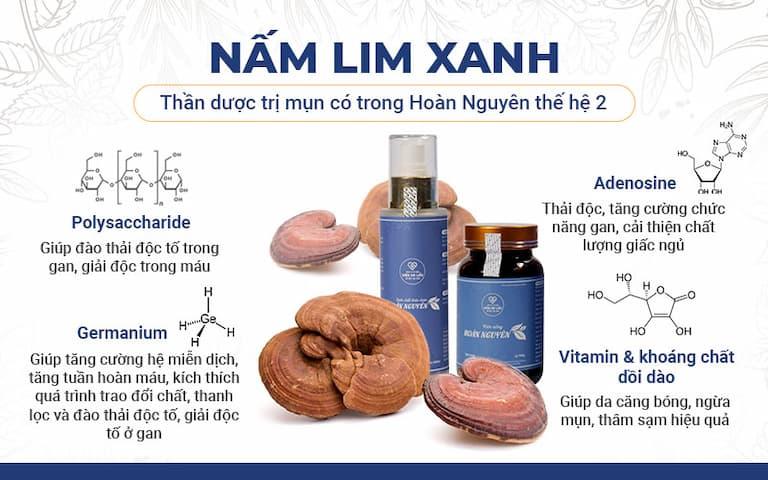 Nấm linh xanh là thành phần thảo dược quý có trong bộ sản phẩm Hoàn Nguyên thế hệ 2